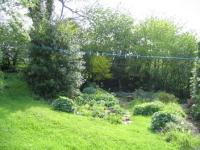Copyright image: Before the garden makeover.
