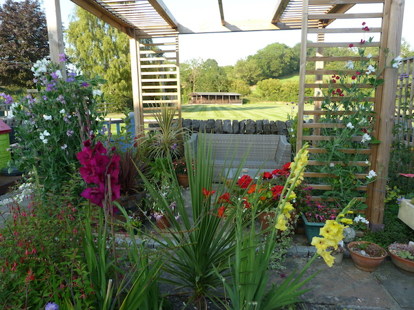 Copyright image: small garden design with pergola.
