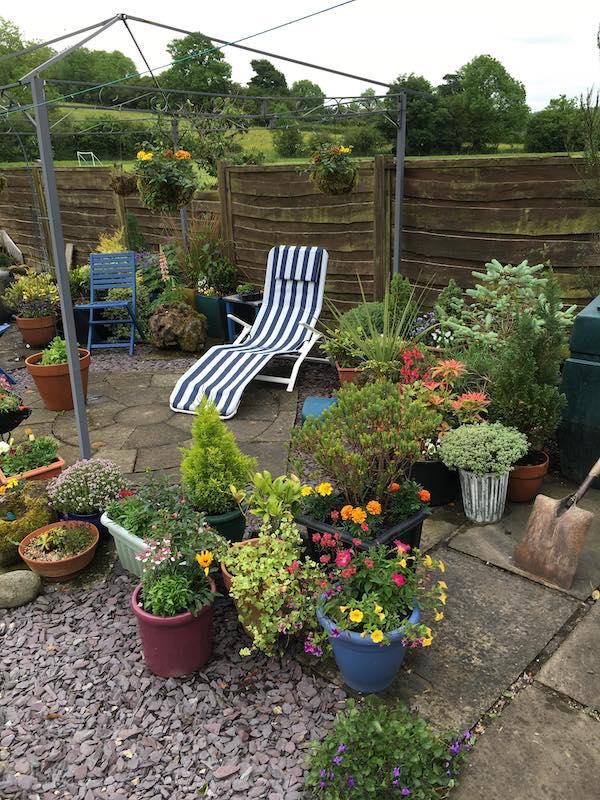 Copyright image: small garden design before makeover.