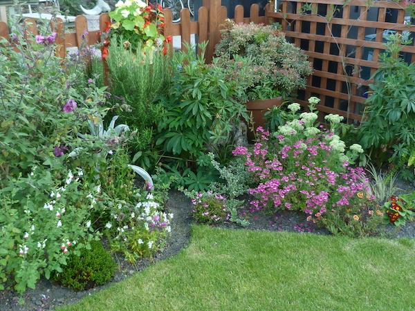 Copyright image: small garden design.