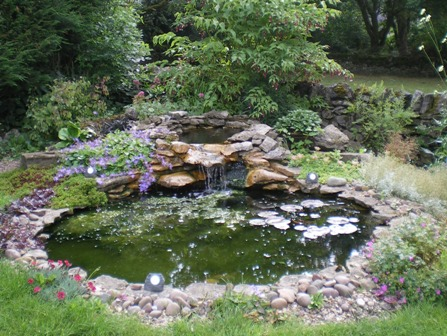Pergola romance for Garden design with pond and waterfall