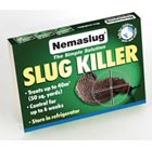 Nematodes slug killer.