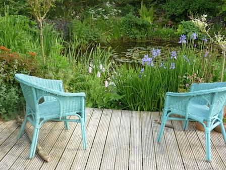 Copyright image: Natural pond with decking, blue iris and candelabra primulas.