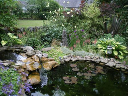 Copyright image: A spectacular garden pond with waterfall next to beautiful perennial plants and shrubs.