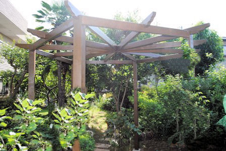 Copyright image: Rob's wonderful hexagonal pergola, with curved rafter tail ends.