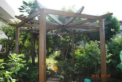 Hexagonal Pergola Built from the Plans