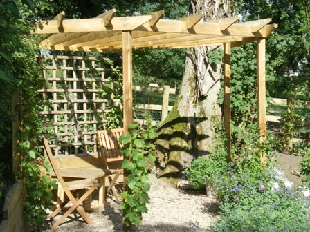 Copyright image: A wonderful corner pergola design with climbing plants.