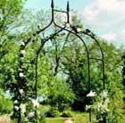Metal rose arch.